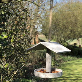 Concrete Bird Feeder
