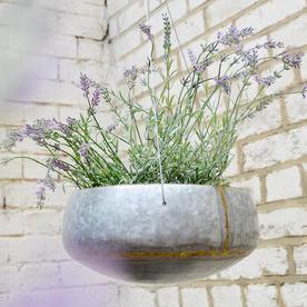 Hanging Bowl Planter