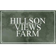Smooth Green Slate Three Line House Sign with Border - Size 5