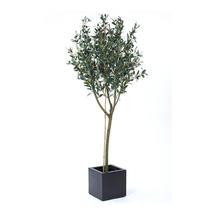Faux Olive Tree - 180cm