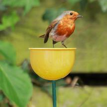 Wild Bird Garden Cup Feeder - Yellow