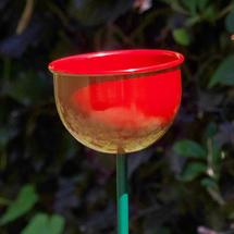 Wild Bird Garden Cup Feeder - Red