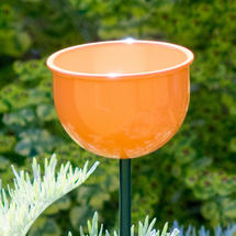 Wild Bird Garden Cup Feeder - Orange