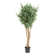 Faux Eucalyptus Tree - 180cm