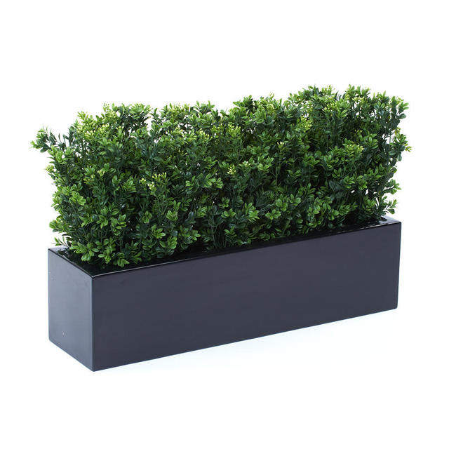 Buy window box with informal faux box hedge the worm for 100 cm window box