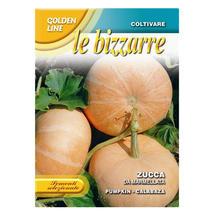 Pumpkin Zucca Da Marmellata