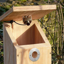 Camera Ready Nestbox with Colour/Infrared