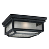 Shepherd Weathered Zinc Flush Mount Ceiling Light