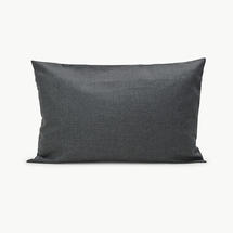 80x50cm Scatter Cushion