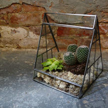 Antique Zinc Pyramid Terrarium
