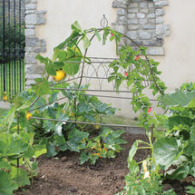 Square Potager Ornamental Support Frame