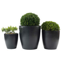Cone Planter set of 3
