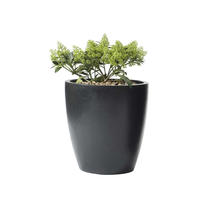 Cone Black Planter Small