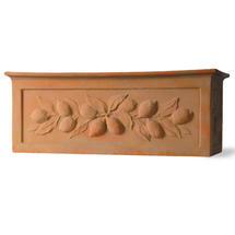 Citrus Window Box