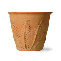 Fern Planter - Small
