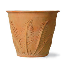 Fern Planter - Medium