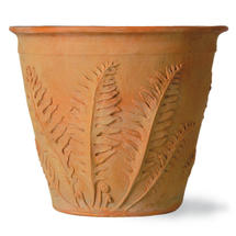 Fern Planter - Large