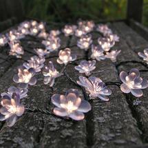 Midnight Flower Lights White