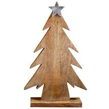 Wooden Trees topped Metal Star - 75cm