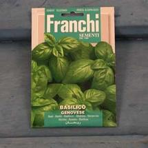 Basil Italiano Seeds