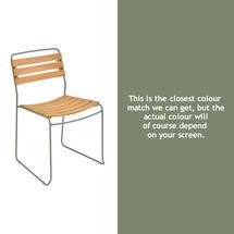 Surprising Teak Chair - Cactus