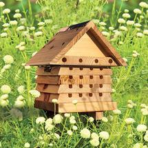 Flip Top Solitary Bee Hive