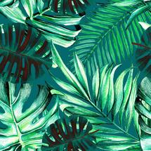 Wallpaper Rainforest