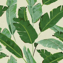 Wallpaper Banana Leaves