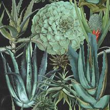 Wallpaper Succulentus Anthracite