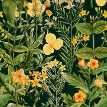 Wallpaper Mimulus Anthracite