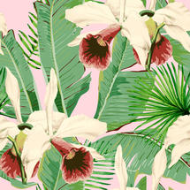 Wallpaper Treasure Island Pink
