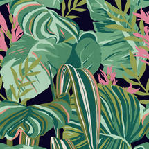 Wallpaper Tropical Foliage Anthracite