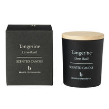 Scented Candle Tangerine - Lime & Basil