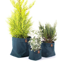 Waxed Canvas Cache Pot - Set of 3