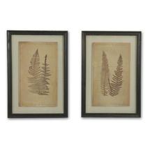 Fern Leaves Botanical Prints - Set of 2