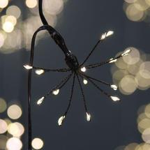 Allium Battery String Lights - Black