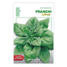 Spinacio Viroflay -Spinach