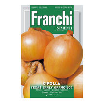 Onion Texas Early Grano seeds