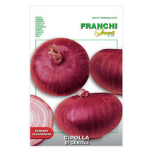 Red Onion Of Genova
