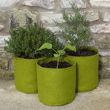 Vigoroot Culinary Herb Pots - 3 pack
