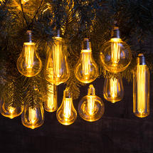 10 Mixed Bulbs String Lights