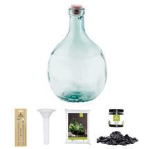Complete Bottle Terrarium 5L set - Grey Gravel