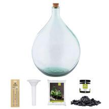 Complete Bottle Terrarium 35L set - Grey Gravel
