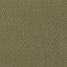 50cm x 50cm Scatter Cushion - Fife Lichen