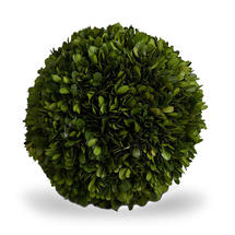 Preserved Topiary Ball 25cm - Large