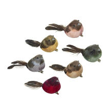 Feathered Finches Decorations - Set of 6