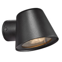 Aleria Outdoor Down Light - Black