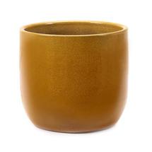 Glazed Yellow Honey Plant Pot