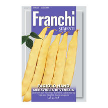Dwarf French Bean Yellow Meraviglia Di Venezia Seeds