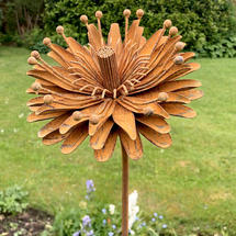 Rusted Aster Flower